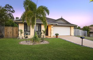 Picture of 16 Glentree Avenue, Upper Coomera QLD 4209