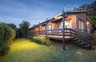 Picture of 47 Halls Road, Myrtleford VIC 3737