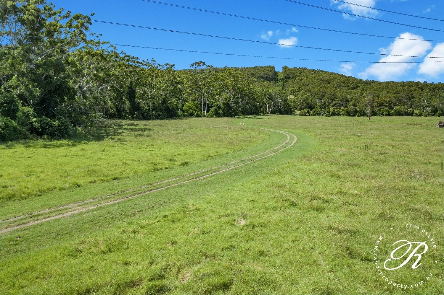 124 Dog Hole Road, Stockrington NSW 2322, Image 1