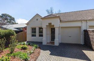 Picture of 11 Brooker Street, Glenunga SA 5064