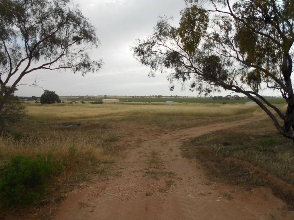 Lot 1 Cattle Track, Crystal Brook SA 5523, Image 0