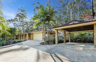Picture of 13 Bilby Close, Nerang QLD 4211