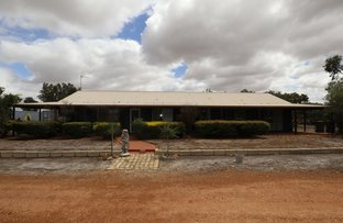 Picture of 145 Aldersyde - Pingelly Rd, Pingelly WA 6308
