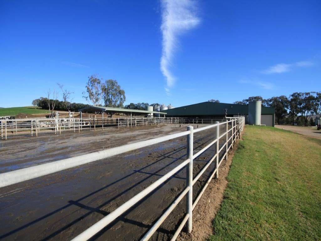 2767 Jerrys Plains Road, Jerrys Plains NSW 2330, Image 2