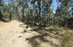 Picture of 1015 Grange Access Road, Jackadgery NSW 2460