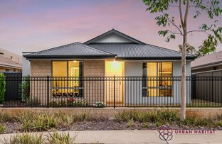 Picture of 229 Lambeth Circle, Wellard WA 6170