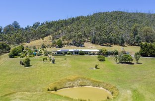 Picture of 48 Seal Rock Road, Buxton VIC 3711