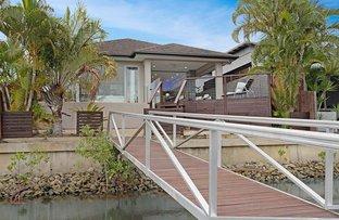 Picture of 14 Apollo Quay, Trinity Park QLD 4879