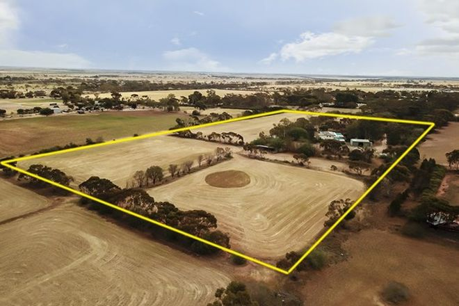 Picture of 51 Old Mallala Road, OWEN SA 5460