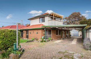 Picture of 3 Wandin Court, Meadow Heights VIC 3048