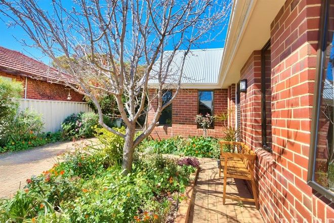 Picture of 241a Flamborough Street, DOUBLEVIEW WA 6018