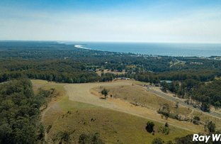 Picture of Lot 25 Coastal View Drive, Tallwoods Village NSW 2430