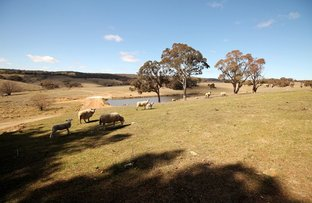 192 Doust Road, Lake George NSW 2581