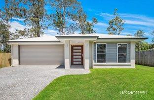 19 Cassimaty Street, Ferny Grove QLD 4055