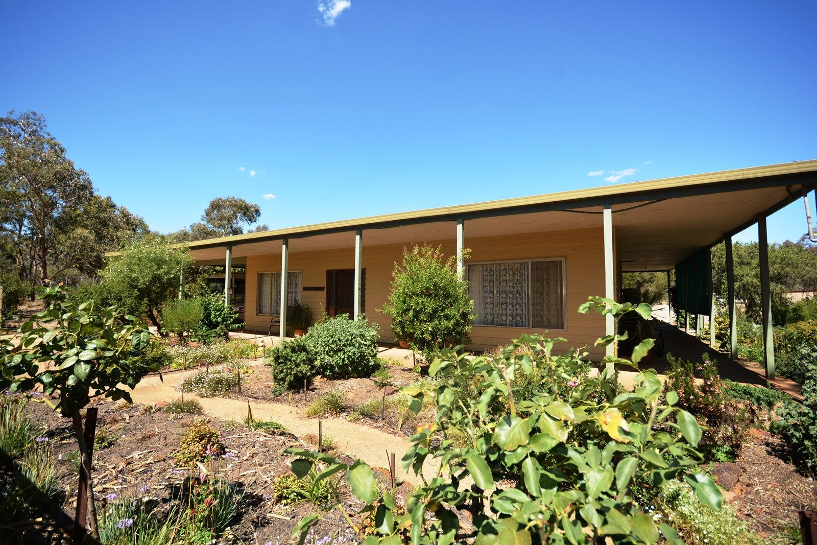 371 Red Hill Road, Deep Lead, Stawell VIC 3380, Image 1