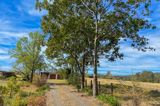 Picture of 616 Comboyne Rd, CEDAR PARTY NSW 2429