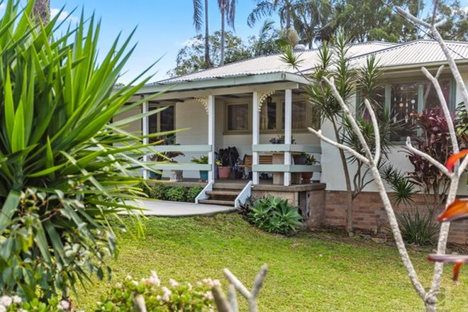 Picture of 3 Frances Street, MURWILLUMBAH NSW 2484