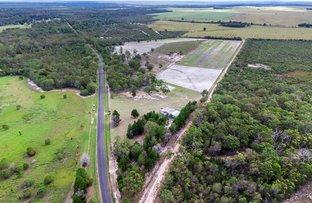 Picture of 142 Beelbi Creek Road, Beelbi Creek QLD 4659
