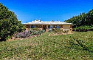10 Hoffman Close, Montville QLD 4560