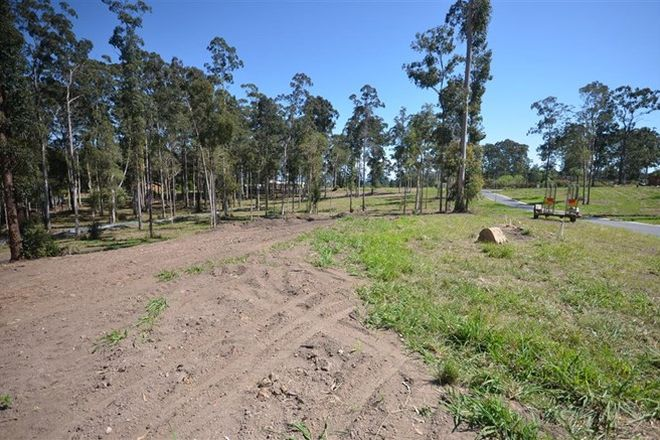 Picture of Lot 5 Harriet Place, KING CREEK NSW 2446