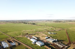 Picture of - Timboon-Terang Road, Ecklin South VIC 3265