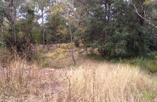 19 Bridgeview Crescent, Mount Riverview NSW 2774