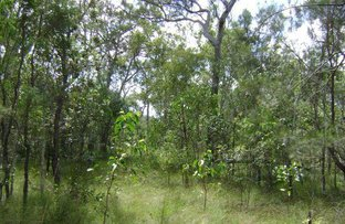 Picture of 590 Pacific Drive, Deepwater QLD 4674