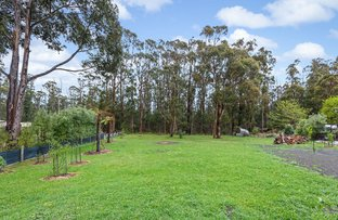 Picture of 305 NATIONAL PARK ROAD, Kinglake West VIC 3757