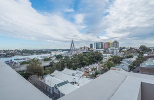 Picture of 115/209-211 Harris Street, Pyrmont NSW 2009