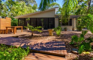 Picture of 1 Ibis Court, Rainbow Beach QLD 4581
