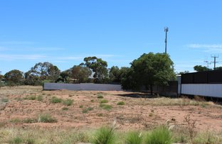 Picture of Lot 32 First Street, Napperby SA 5540