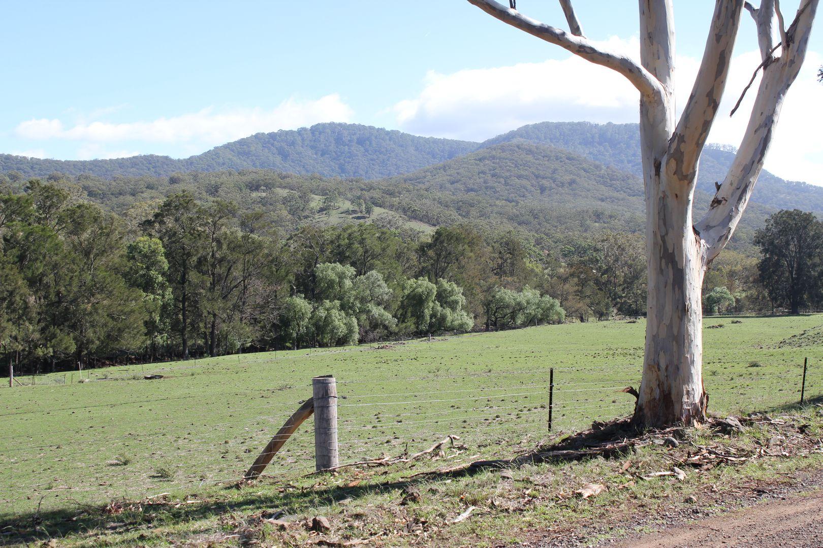Lot 13 Roma Road, Merriwa NSW 2329, Image 0