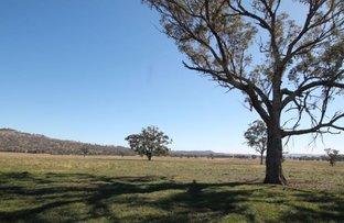 Picture of 763 Warrah Creek Road, Warrah Creek NSW 2339
