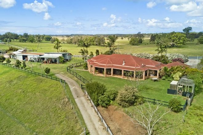 Picture of 281 South West Rocks Road, POLA CREEK NSW 2440