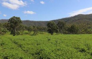 Picture of Lot 2 Upper Allan Creek Road, Bromelton QLD 4285