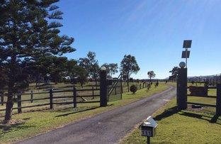 Picture of 111 Bergins Pocket Road, Kandanga QLD 4570