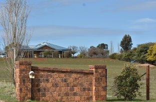 Picture of 7 ROSELLA STREET, Temora NSW 2666