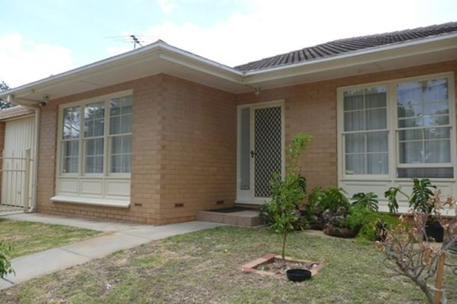 Picture of 8 Kadonga Ave, KENSINGTON GARDENS SA 5068