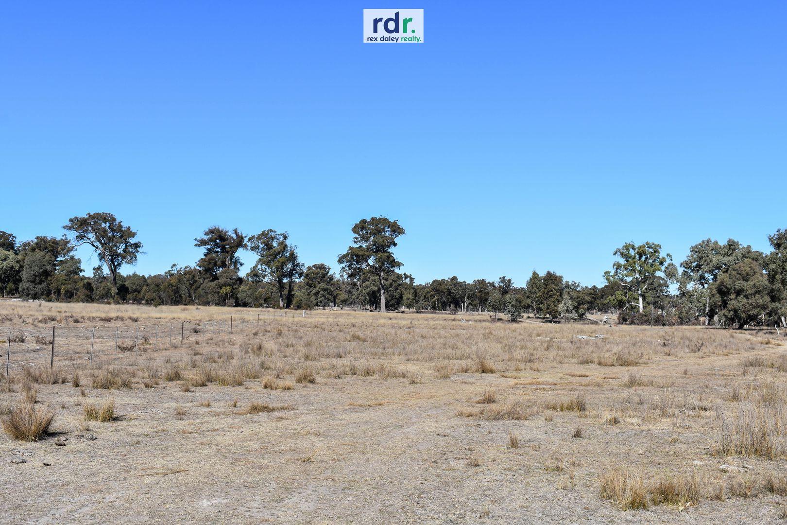 1178 Moredun Dams Road, Inverell NSW 2360, Image 0