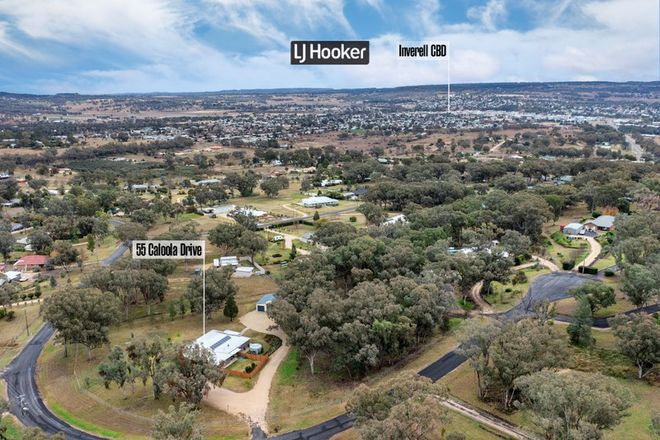 Picture of 55 Caloola Drive, INVERELL NSW 2360