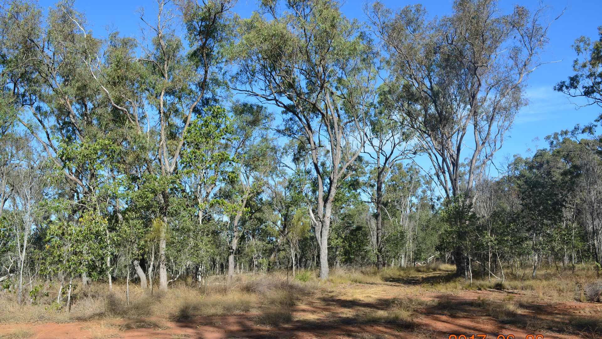 Lot 5 Ivanhoe Road, Coverty QLD 4613, Image 1