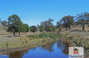 Picture of Grahamstown Road, Tumblong NSW 2729