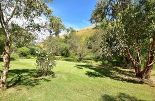 Picture of 8570 Main South Road, Delamere SA 5204