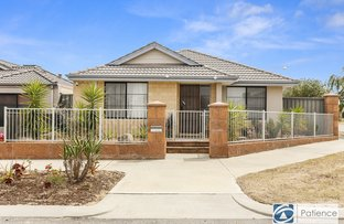 Picture of 8 Paludosa Link, Banksia Grove WA 6031