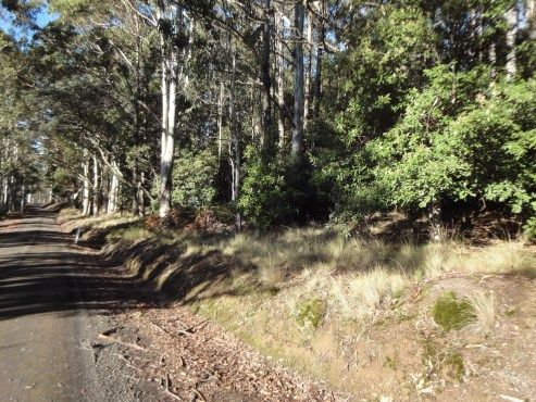Lot 2 Mount Barrow Road, Nunamara TAS 7259, Image 2