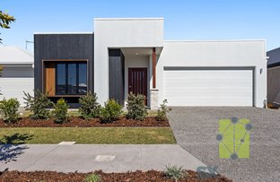 Picture of 11 Harlequin Rd, Harmony, Sippy Downs QLD 4556