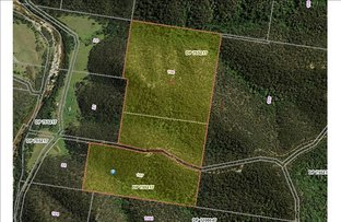 Lot106&107 Wollombi Rd, Paynes Crossing NSW 2325
