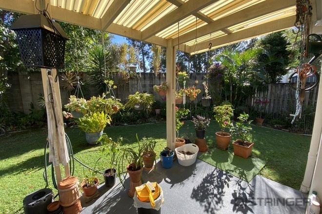 Picture of 6/1 Falcon Way, TWEED HEADS NSW 2485