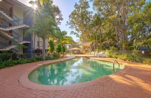 Picture of 116/68 Pacific Drive, Port Macquarie NSW 2444