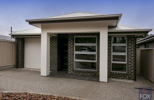 Picture of 9A Grantham Grove, Paradise SA 5075